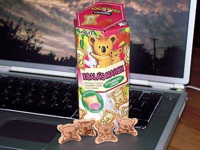 KoalasMarchStrawberry.jpg