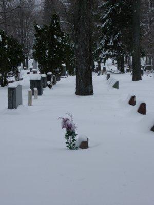 GraveFlower.jpg