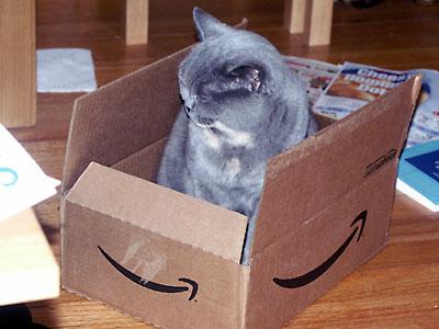 Little_Kitty_In_A_Box.jpg