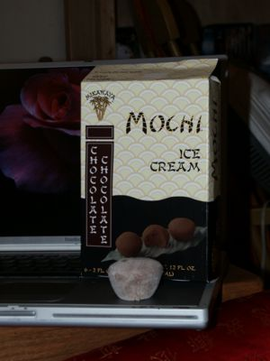 MochiChocolateChocolate.jpg