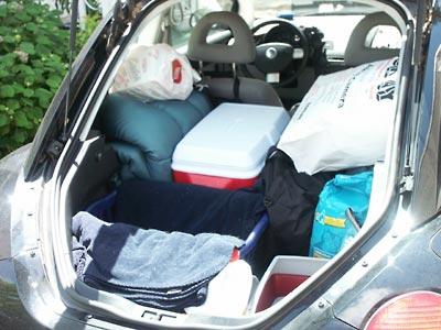 PackedBugBack.jpg