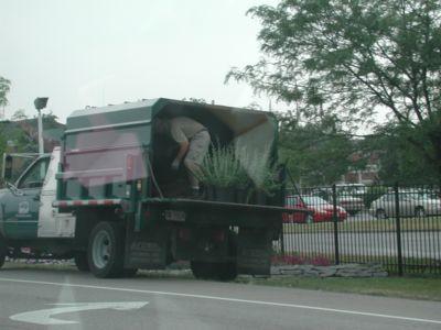 PlantDealer 62905.jpg