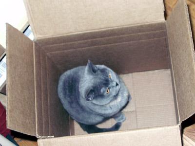 VandeBox.jpg